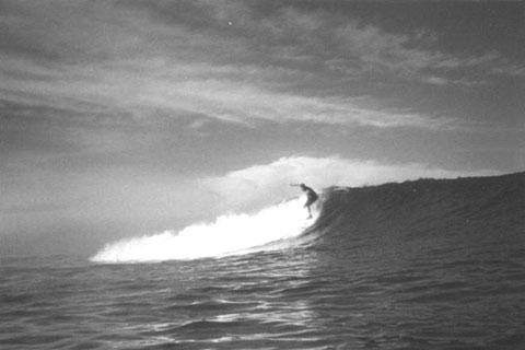 Gustavo Otto, 2001 - Sumatra (mainland) - photo:Zane